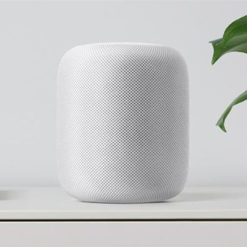 Smart speaker,oltre 50% case Usa in 2020